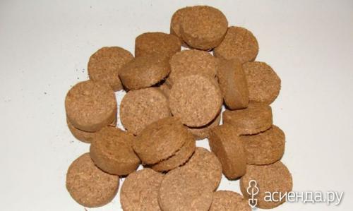 Таблетки кокосовые для рассады. Чем хороши кокосовые таблетки для рассады?