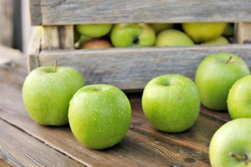 Сорт зеленых яблок. Зеленые яблоки: лучшие сорта с названиями и фото (каталог)